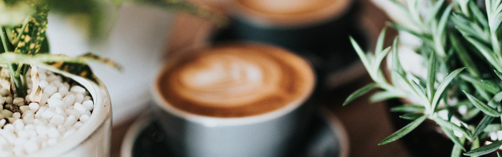 Les collations et pauses café